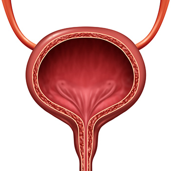 bladder problems and treatment