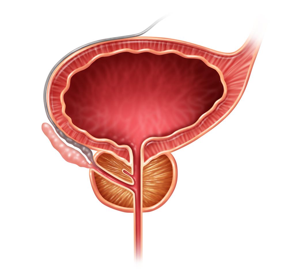 prostate problems hamilton